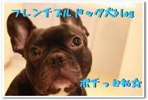 blog村4.jpg