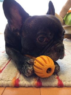 iphone/image-20141013215939.png